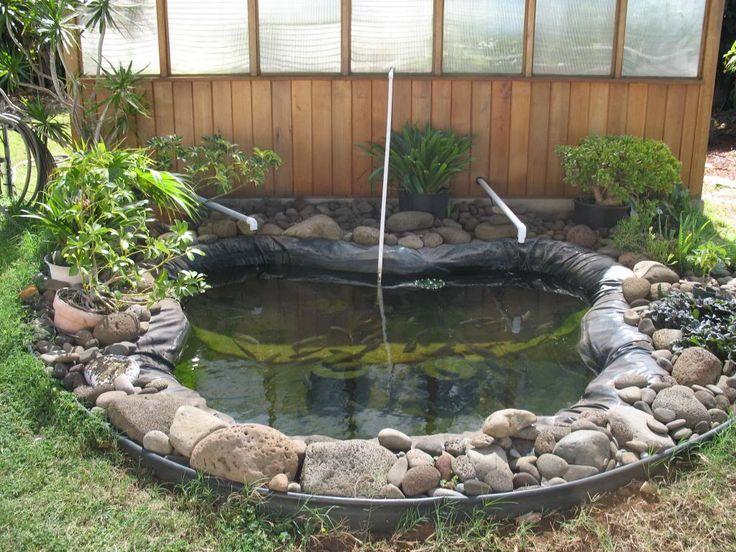 7 best images about aquaponics on pinterest aquaponics for Fish ponds sydney