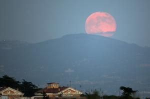 "TRUE: A ""Full Pink Moon"" occurs every April, but that doesn't mean the moon literally turns pink. Here's the scoop."
