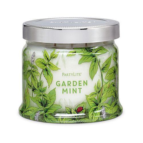 Garden Mint 3 Wick Jar Candle Partylite 2018 Fragrances