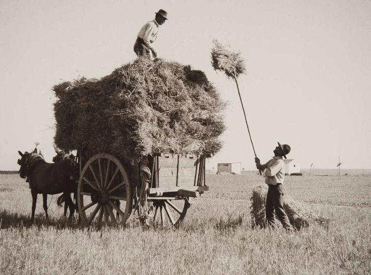 "Série ""Portugal Rural"". Alentejo, 1943-45."