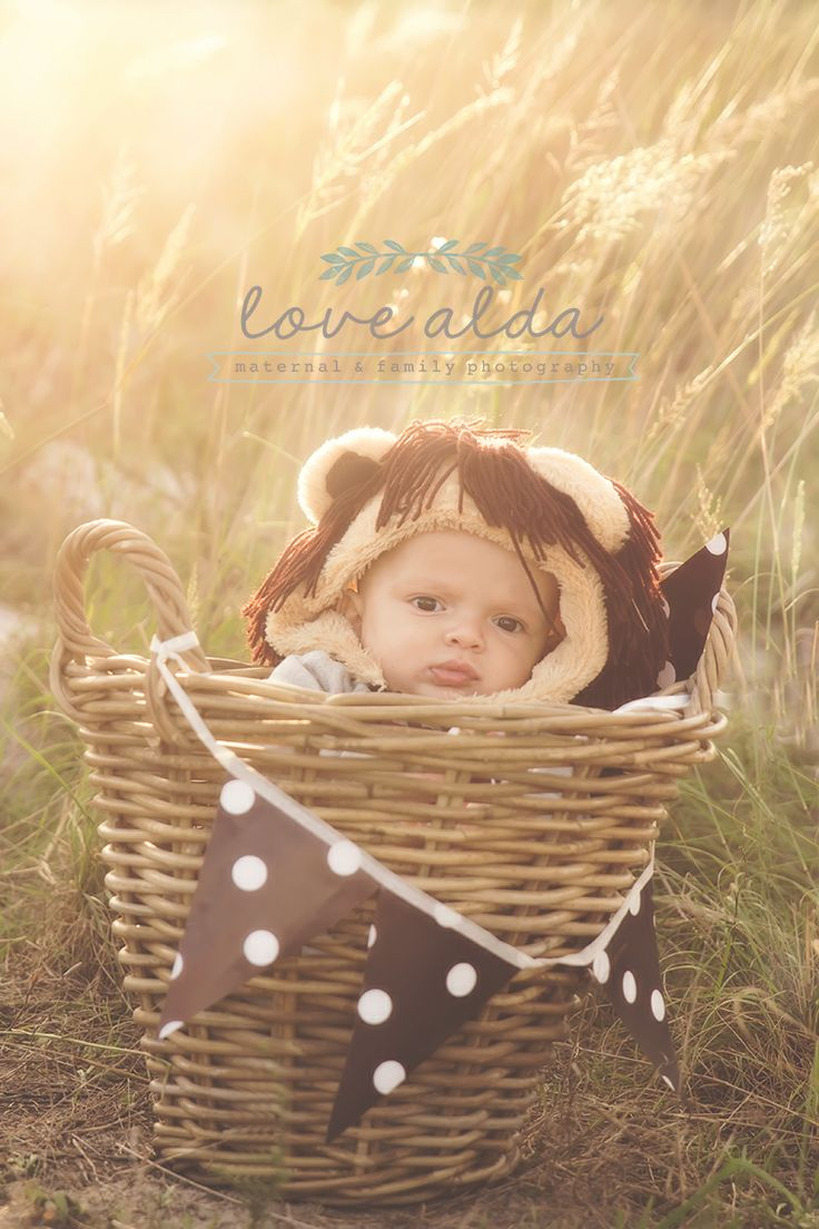 Baby photography lion costume  www.lovealda.com