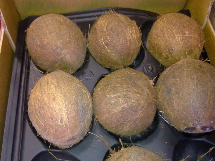 El aceite de #coco sirve como sustituto #vegano de la mantequilla. http://goo.gl/jmyRL8