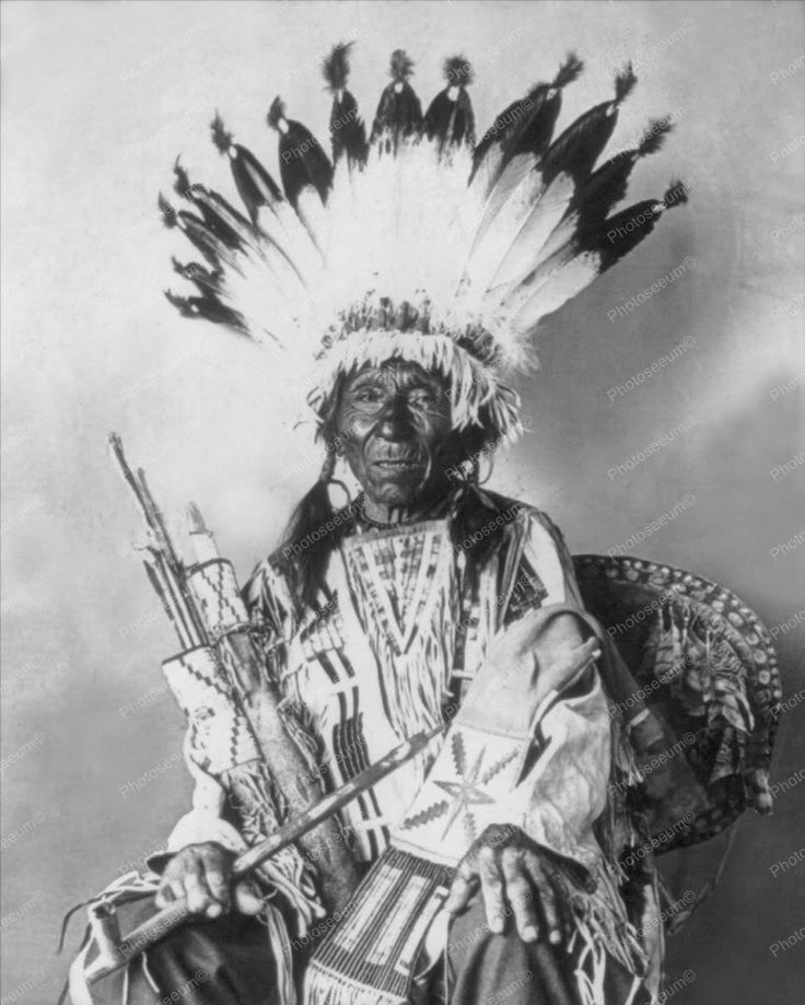 Chief Sioux Native Indian Portrait