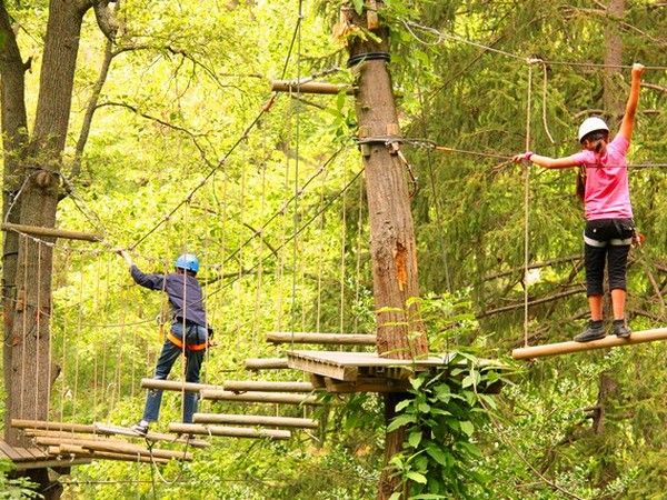 Forest grimp : plus de 15 jeux aériens dans les arbres de 3 à 10 m de hauteur sur près de 200 m de long : pont de singe, saut de Tarzan, descente en tyrolienne et autres jeux suspendus.