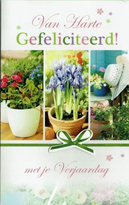 Verjaardagskaart Voor Een Vrouw Verjaardagskaarten Bloemen Voor
