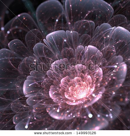 pink abstract flower with sparkles on black background, fractal illustration by Anikakodydkova, via Shutterstock