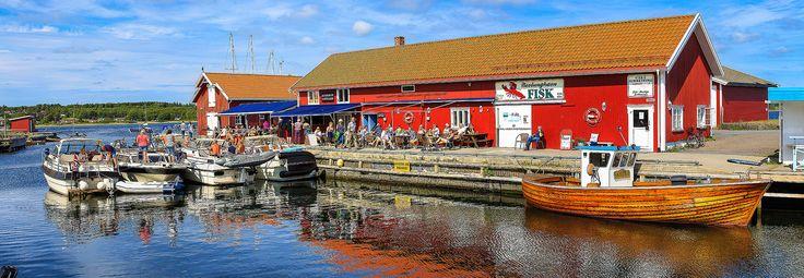 nevlunghavn - fiskemottaket