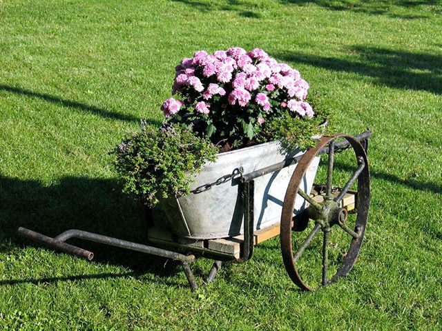 34 Of The Best Wheelbarrow Planter Ideas. Garden WagonOld ...