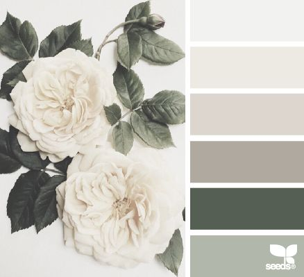 Beautiful palette with grey leaning towards green. It reminds me of an English garden. This palette is soft, feminine, tranquil with the use of off-white and deep grey-green. http://homeology-academy.teachable.com/ www.homeology.co.za