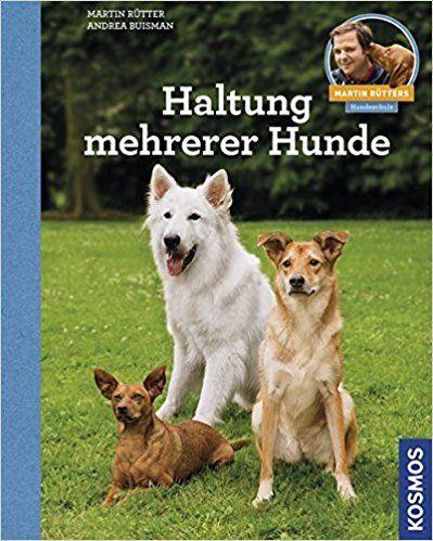 Martin Rütter Hundefutter