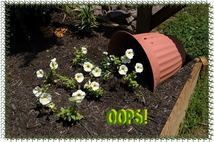 11 Best Images About Spilled Flower Pots On Pinterest