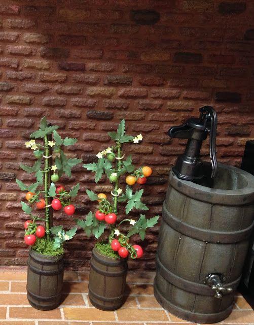 how to: miniature tomato plants