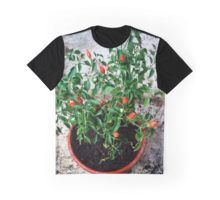#updated my #design #chilli https://www.redbubble.com/people/gasponce/works/11007832-chilli?asc=t … μέσω του χρήστη @redbubble