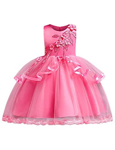 0c663482a Blevonh Birthday Dresses for Girls Little Kids 3D Flower Fashion ...