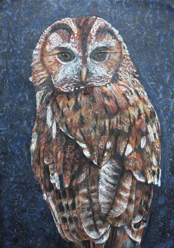 Owl 4 by Roz Edwards
