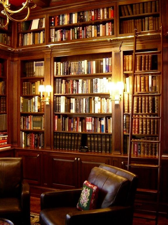 History Lover Will Definitely Love The Idea Of Cherry Shelves From Floor To  Ceiling And Wall To Wall With Matching Ladder, Leather Chairs, An  Interesting ...