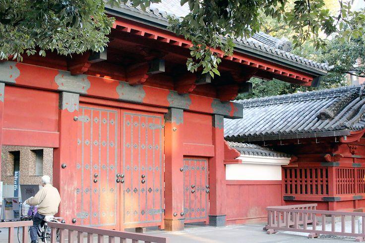 The Famous Tokyo University main gate