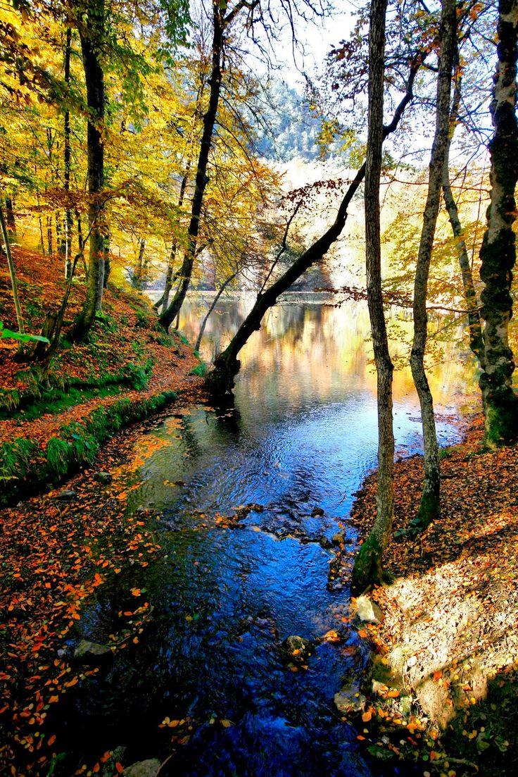 The Yedigöller National Park is located in the north of the Bolu Province, Yedigöller, Bolu
