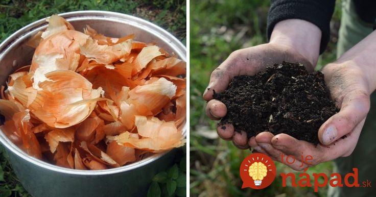 O tom, že cibuľové šupky sú veľmi užitočné nielen v domácnosti ale aj v otázkach zdravia, ste už určite poučili. Vedeli ste však aj to, že ide o veľmi dobrého pomocníka vo vašej záhrade?