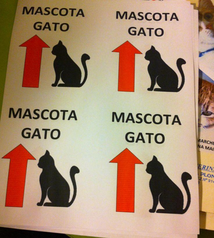 Etiquetas de cuidado de mascota para las jaulas, para que el personal de aeropuerto tenga cuidado con ellos. Cuentan con identificación completa y contacto telefónico.