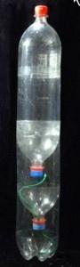 Esperimenti scientifici per bambini - Micro ecosistema in bottiglia