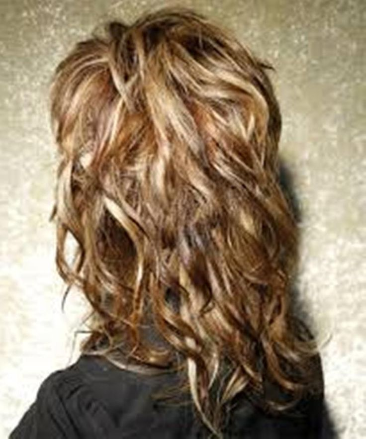 Hairstyles, Long Shaggy Hairstyles Back View: Comely Long Shaggy Hairstyles