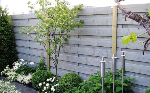 Begroeiing van schutting- zijkant tuin