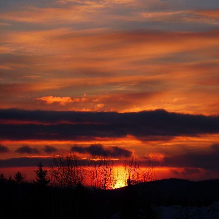 #sun #sunrise #colorful #clouds #sky #beautiful #instagood #ig_myshot #geopix#narcityquebec #explorecanada #quebecregion #quebecjetaime #picoftheday #tagsforlikes #ig_myshot #moncharlevoix #sainthilarion by serlab55