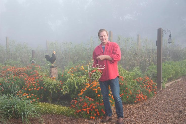 Get expert gardening and maintenance tips from P. Allen Smith at Moss Mountain…