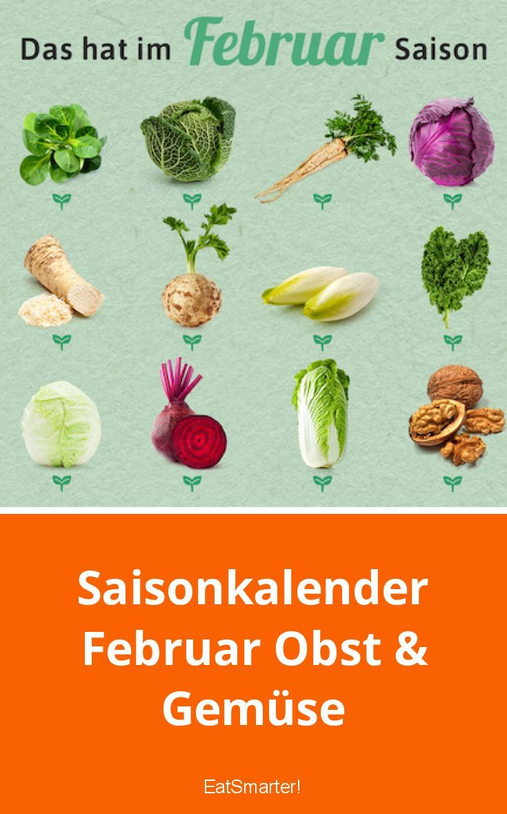 Saisonkalender Februar Obst & Gemüse   Saisonkalender ...