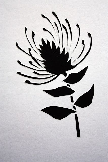 After My Coffee - Pincushion Protea paper cutout - 2.5 x 3.5 inches