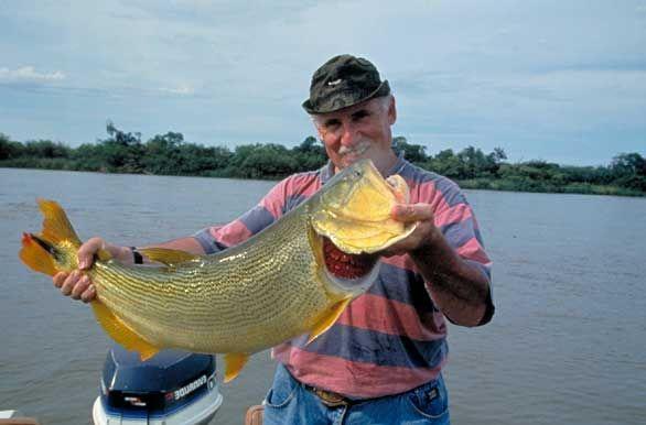 Pesca del Dorado, Corrientes, Argentina