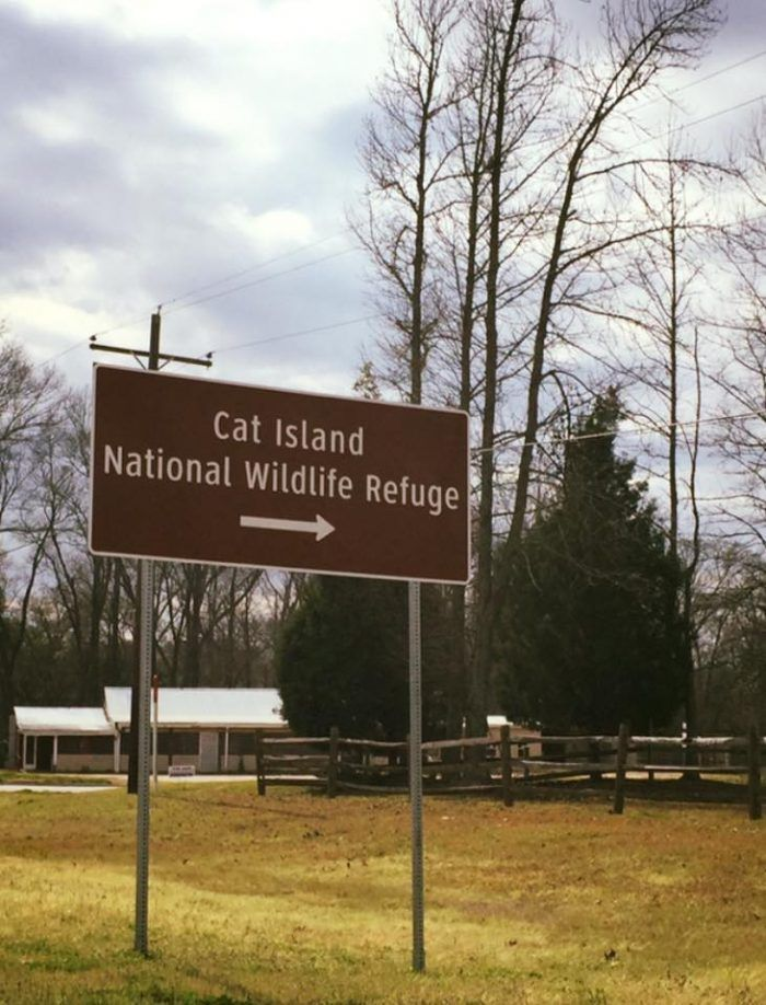 Explore Cat Island National Wildlife Refuge In
