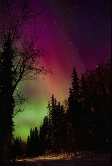 The Northern Lights, must see them. Bucket List for sure
