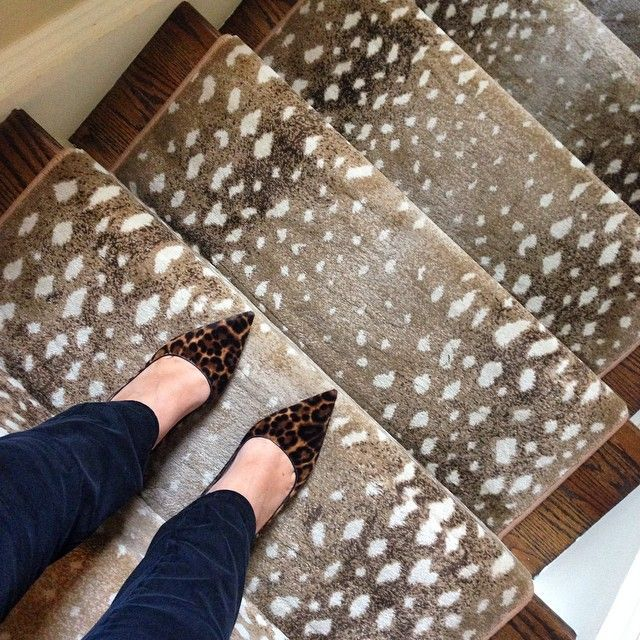 Antelope Stair Runner   A Touch Of Animal For The Front Entry Stairs, Keep  Rail White