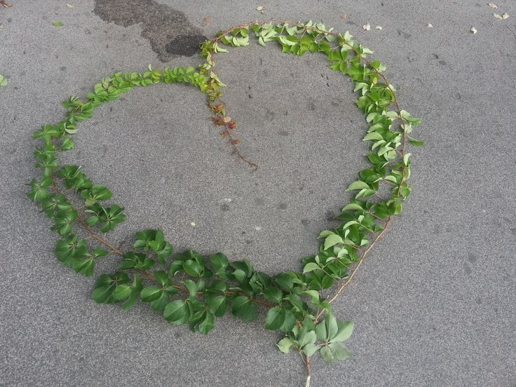un cuore sull'asfalto