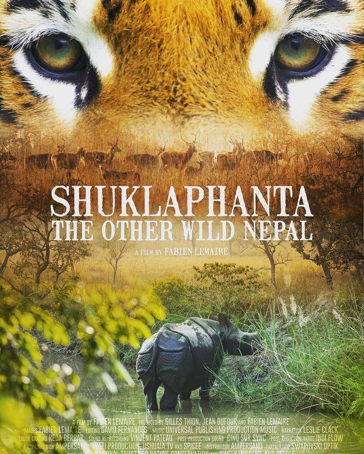 """Shuklaphanta the other wild Nepal"" my new wildlife & environmental film is ready for festivals and tv 4K  #wildlifefilmmaker #wildlifefilm #nepal #shuklaphantafilm #tiger #rhino #swampdeer #animalier #documentaire #4k #sony"