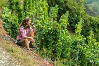 """VIN: Det nye, tyske rødvinsparadis, Ahr, der ligger i Eifel-bjergene lidt syd for Bonn er det """"nye Bourgogne"""". Vinferie i Tyskland er noget helt specielt. Vindistrikterne i vores naboland har gavn af det lunere klima. #vin #Tyskland #ferie #rejser"""