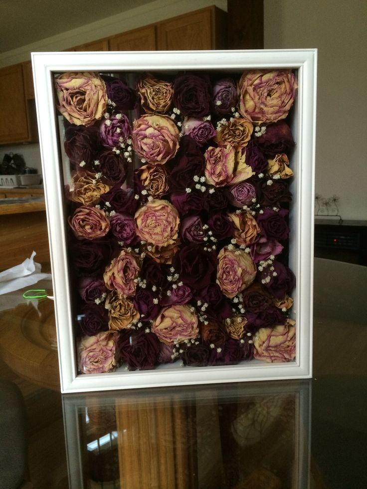 Dried out flowers in a shadow box!