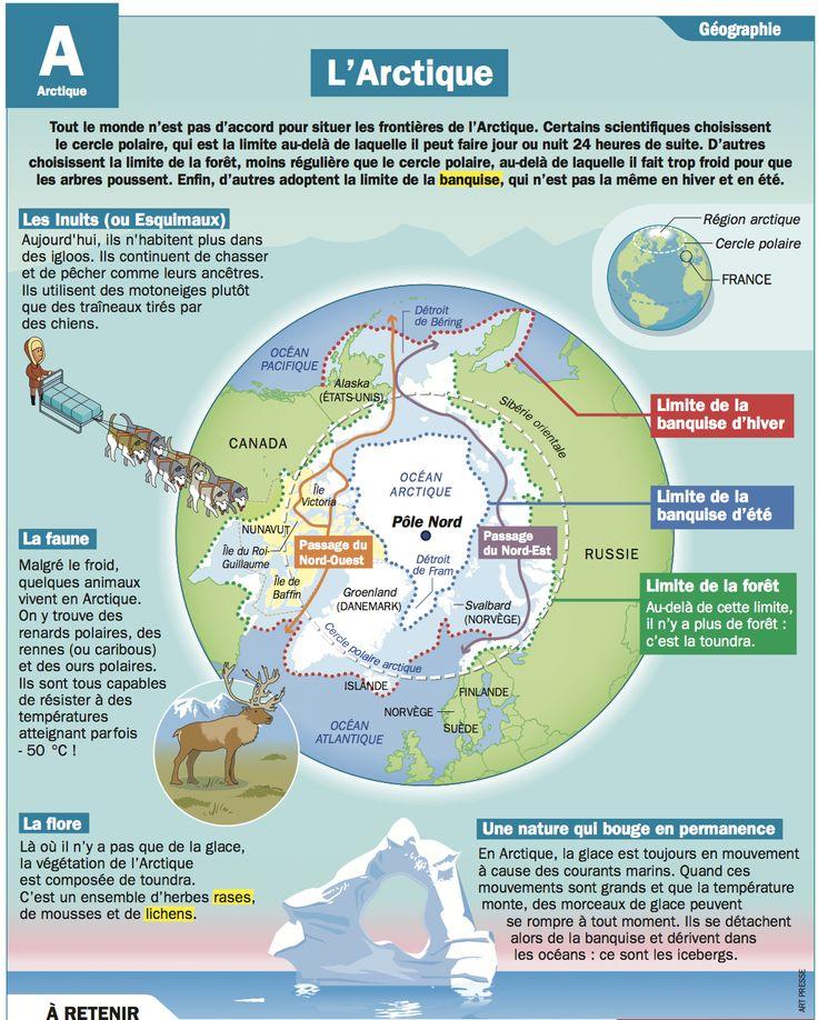 Fiche exposés : L'Arctique