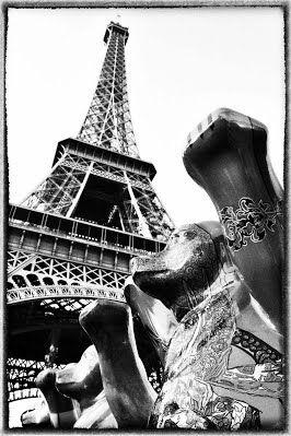 paris - cristina leone fotografia
