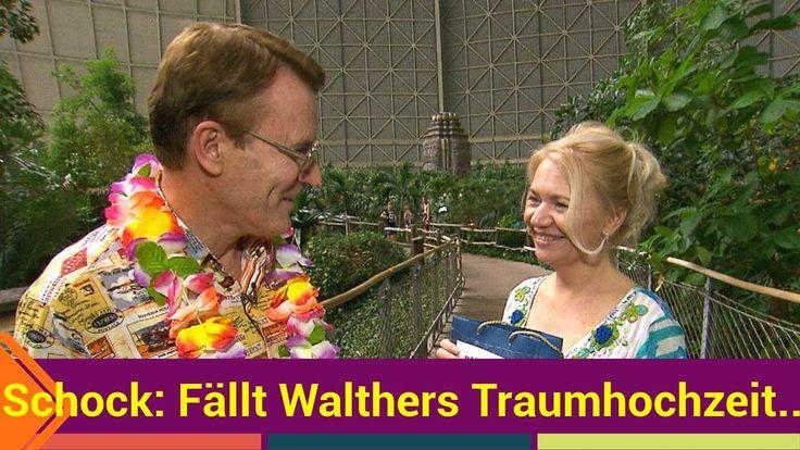 Hat sich Walther (57) etwa zu früh gefreut? Heute sollen bei Traumfrau gesucht eigentlich die Hochzeitsglocken läuten: Der Kultkandidat der Kuppelshow möchte seiner Liebsten Marta auf Mauritius das Jawort geben. Ob es wirklich dazu kommen wird ist aber mehr als fraglich!   Source: http://ift.tt/2sLqzeW  Subscribe: http://ift.tt/2rN7nAp: Fällt Walthers Traumhochzeit doch noch ins Wasser?