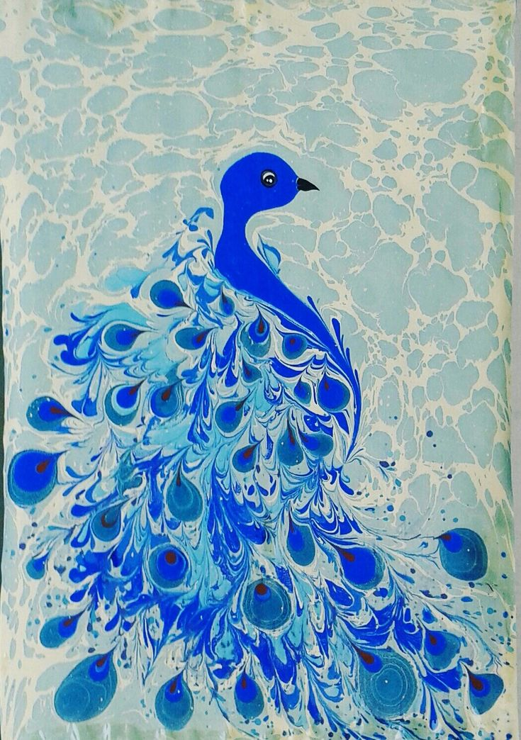 ebru sanatı (marbling art) by mai hatti.  Peacock.