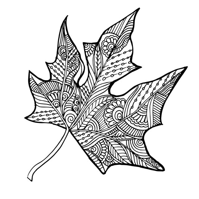 Hand Drawn Black And White Autumn Leaf Hand Drawn Black Png And Vector With Transparent Background For Free Download How To Draw Hands Black And White Drawing Vector Sketch