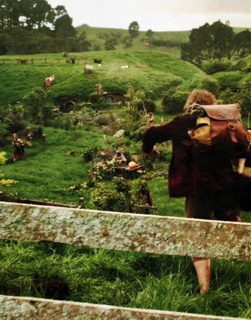 """I can't just go running off into the blue. I am a Baggins of Bag End."""