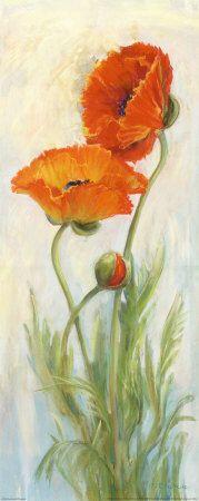 Rembrandt Poppies by Carol Rowan