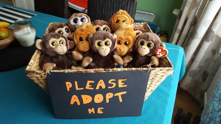 Jungle theme party adopt a monkey - cute idea. Could be a smaller jungle animal pack from mambos instead of a party pack