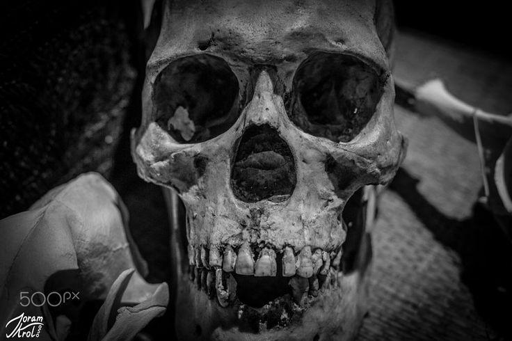Skull by Joram Krol on 500px