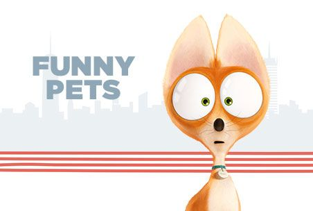 July 8 Funny Pets Pinterest The Secret Theater And Ojays