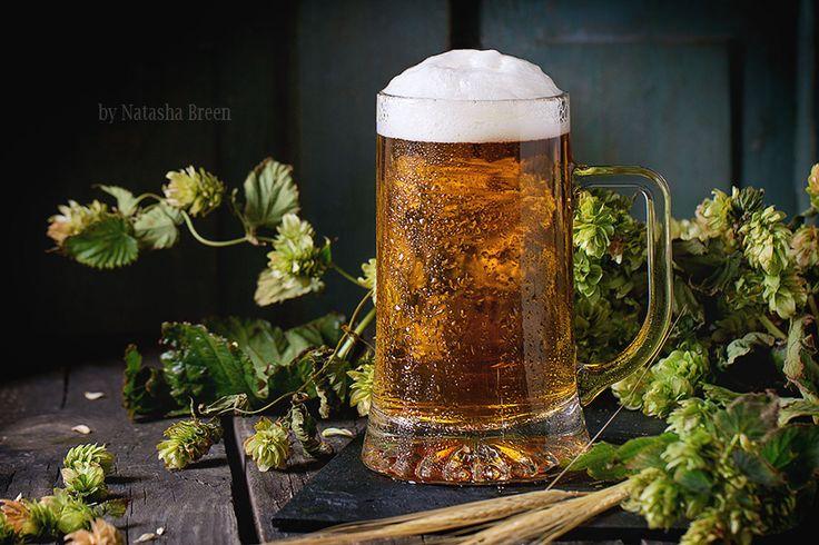 Mug of lager beer by Natasha Breen on 500px